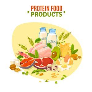 Protein Ein Bild, auf dem viele proteinhaltige Lebensmittel sind: Fleisch, Eier, Milch, Käse, Nüsse, Avocado